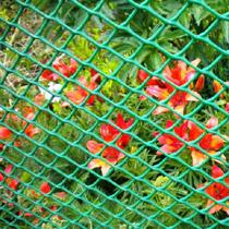 Сетка пластиковая в Самаре для ограждения, сада, вольеров, для вьющихся растений. Скидки от цены на сайте в зависимости от объема.